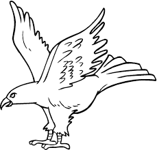 Small Picture Free Printable Eagle Coloring Pages For Kids
