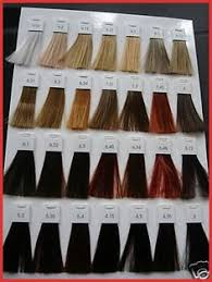 Loreal Hicolor Colour Chart 14 Best Loreal Hair Color Chart Images In 2019 Loreal Hair