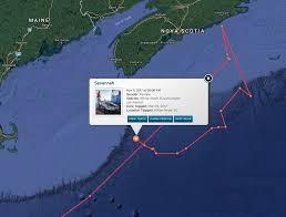 shark savannah sharksavannah twitter 8ft 460lbs female white shark sharksavannah has pinged 16x s in the past week bit ly savannahshark pic com zegsfjibyu