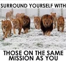 Road To Success Quotes Road To Success Quotes Best Quote 100 83