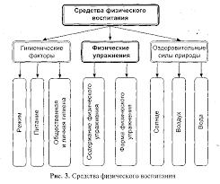Основные физические качества рефераты по физ ре Основные средства для развития физических качеств реферат
