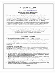 Resume Summary Examples For Customer Service Best Of Customer