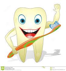 Dent Saine Heureuse Avec La Brosse Dents Photos Stock Image