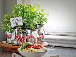 upcycled tin cans into kitchen countertop herb garden flowers plants planters