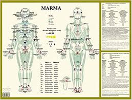 Marma Chart Marma Collectif 9789070281663 Amazon Com Books