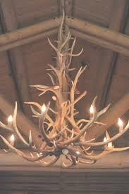 best 25 antler chandelier ideas on cabin regarding colorado