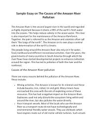 pollution essays twenty hueandi co pollution essays
