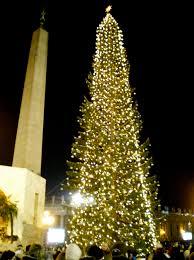 2016 Christmas Light Trade In Vatican Christmas Tree Wikipedia
