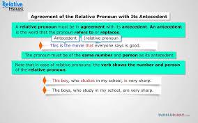 Pronoun Antecedent Agreement Pronoun Antecedent Agreement Youtube