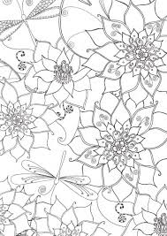 http://www.booktopia.com.au/pretty-flowers-colouring-book-hinkler ...