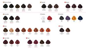 Alfaparf Yellow Hair Color Chart Alfaparf Evolution Of The Color