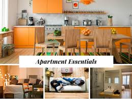 Essential Items For Hassle Free Move On An Apartment In Boston