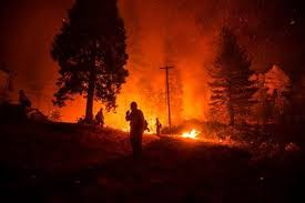 Image result for California: Camp fire missing soars past 600 with death toll up to 63