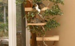 cat tree designs from unless goods unique hardscape design within custom cat furniture 34fxbntosn0r0rieccerre