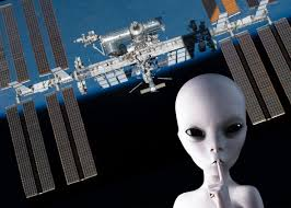 The Bacteria Clinging To Iss Probably Isnt Alien Life
