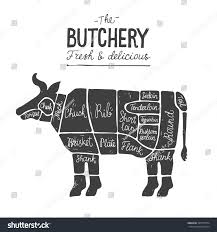Beef Meat Cuts Diagram Butcher Chart Royalty Free Stock Image