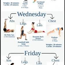 Gym Exercise Planner Beginner Gym Workout Plan For Lose Weight Visual Ly