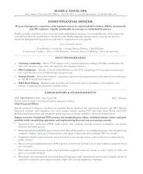 Chief Financial Officer Resume Resume Sample Word Of Free Resumes