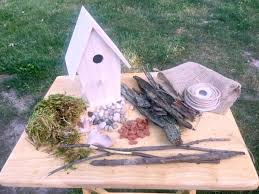 a fairy garden that is easy and inexpensive