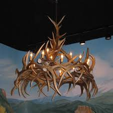 moose and fallow deer antler sconce
