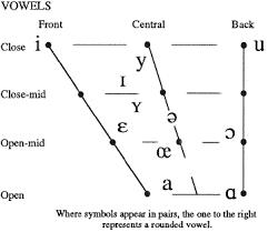 What is the international phonetic alphabet (ipa) used for? Dutch Linguistics Sound Phonetics