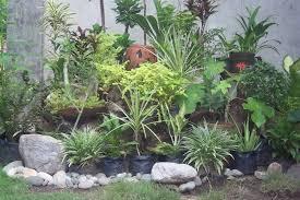 Gardens Do Not Live by Flowers Alone. Rock Garden PlantsRockery ...