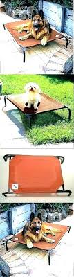 angled outdoor dog bed with canopy beds s pet raised elevate