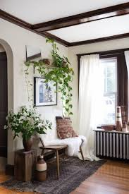 Home Indoor Wall Climbing Plants Inspirations  DecOMGClimbing Plants Indoor