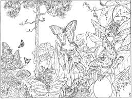 Small Picture Intricate Coloring Pages for Adults The Longleaf Forest is Alive
