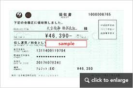 Receipt Issuance Jal Domestic Flights