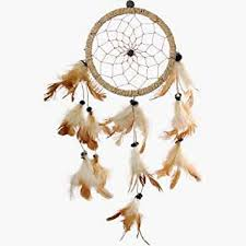 Where To Buy Dream Catchers In Toronto Amazon DreamCatcher DreamCatcher Feathers Approx 100100 89