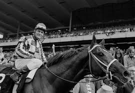 「On June 9, 1973, the thoroughbred horse named Secretariat becomes the first Triple Crown winner since 1948 after winning the Belmont Stakes.」の画像検索結果