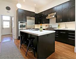 Kitchen Design San Francisco Amazing Modern Kitchen With Espresso Cabinets Long Stainless Cabinet Pulls
