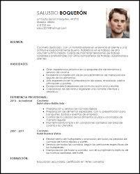 modelo curriculum modelo curriculum vitae cocinero ejemplo cv livecareer