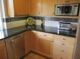 stainless appliances hickory cabinetry uba tuba granite counter tops transitional kitchen seattle