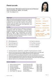 Cool Curriculum Vitae European Format Doc Images Example Resume