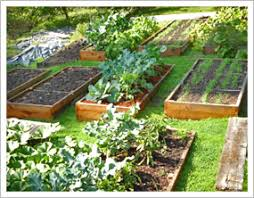 Small Picture Raised Garden Beds Eartheasycom