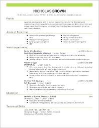 Great Resume Format Examples Sample Job Resume Format Mr Sample Resume Best Simple Format Of 9
