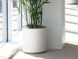 Eco-Friendly Ceramic - Cylinder Planter from Indoor Flower Pots 12