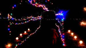 Wonderland Of Lights Lansing Mi Potter Park Zoo Wonderland Of Lights 1