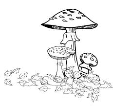 Kleurplaat Herfst Dieren Archidev