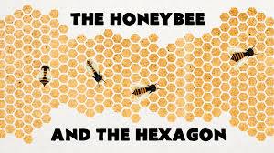 Resultado de imagen para HONEY HEXAGON