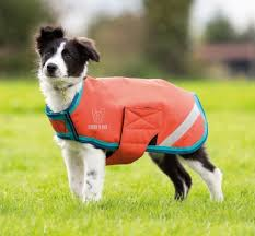rugs dog rugs shires digby fox waterproof dog coat