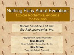 Evidence Evolution Teaching Resources   Teachers Pay Teachers moreover Evidence of Evolution    PowerPoint  Notes   Worksheets by as well Evidence for evolution powerpoint in addition  moreover  as well Evidence of evolution worksheet experience screenshoot for besides Evidence for evolution powerpoint additionally  likewise  also Evidence for evolution powerpoint furthermore Evidence of Evolution   PowerPoint and Handouts   TpT. on evidence for evolution powerpoint