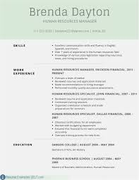 Download 53 Resume Builder Template Format Professional Template
