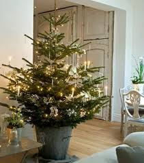 Christmas tree styles to suit your home by Carole Poirot. Potted TreesPotted  ...