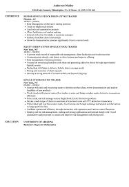 Sample Traders Resume Stock Trader Resume Samples Velvet Jobs