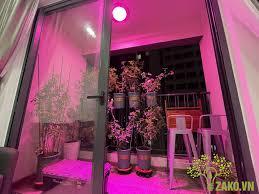 Đèn Led Nông Nghiệp Cao Cấp Zako - Fotos