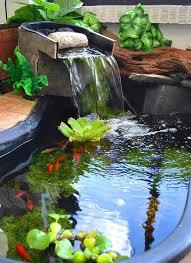 aquarium garden. Plain Aquarium 21 Small Garden Backyard Aquariums Ideas That Will Beautify Your Green  World On Aquarium R