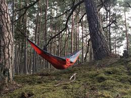Cool Hammock Best Hammock Brands 2017 A Beginners Guide With Reviews